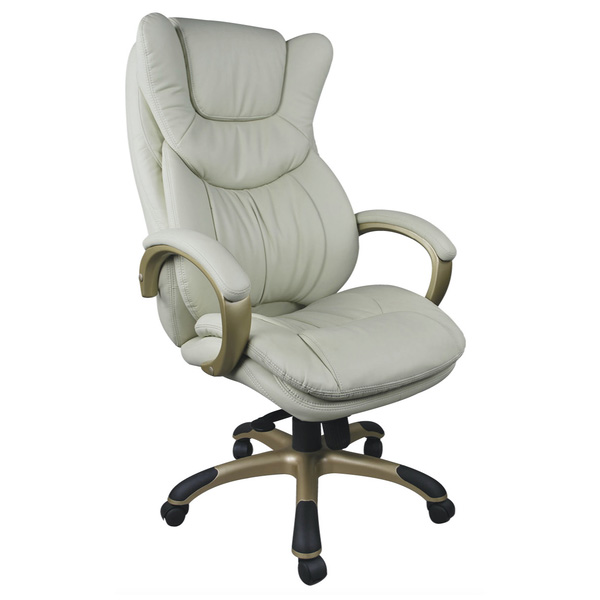 Leather & PU Office Chair 246PP