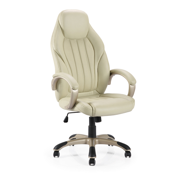 Leather & PU Office Chair 243PP