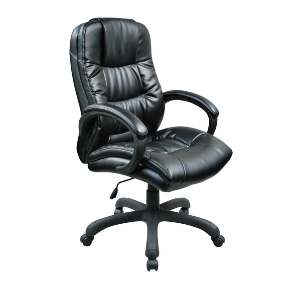 Leather & PU Office Chair 206LPN